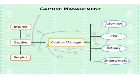 Captive Management game plan